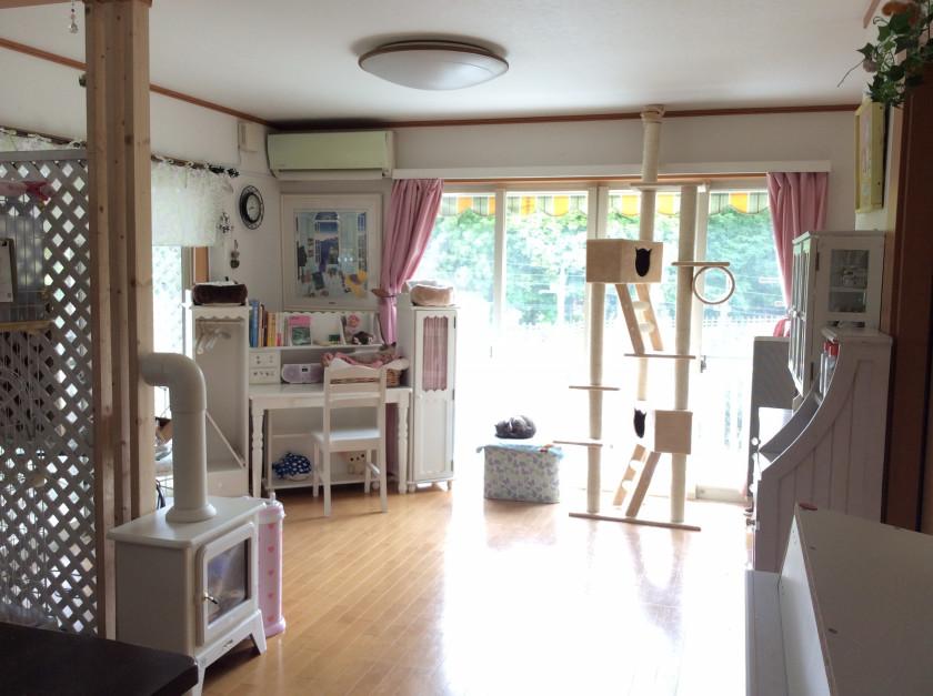 保護猫カフェ Boni's House