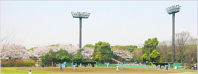 大井ふ頭中央海浜公園